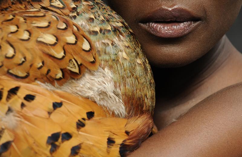 Bird 26, 2010