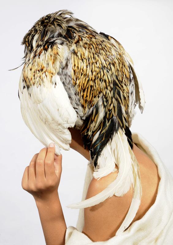 Bird 4, 2010