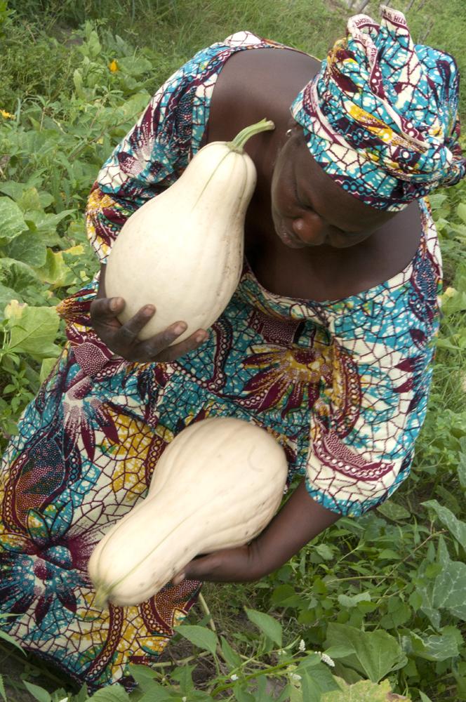 Terre nourricière, Sénégal 2017