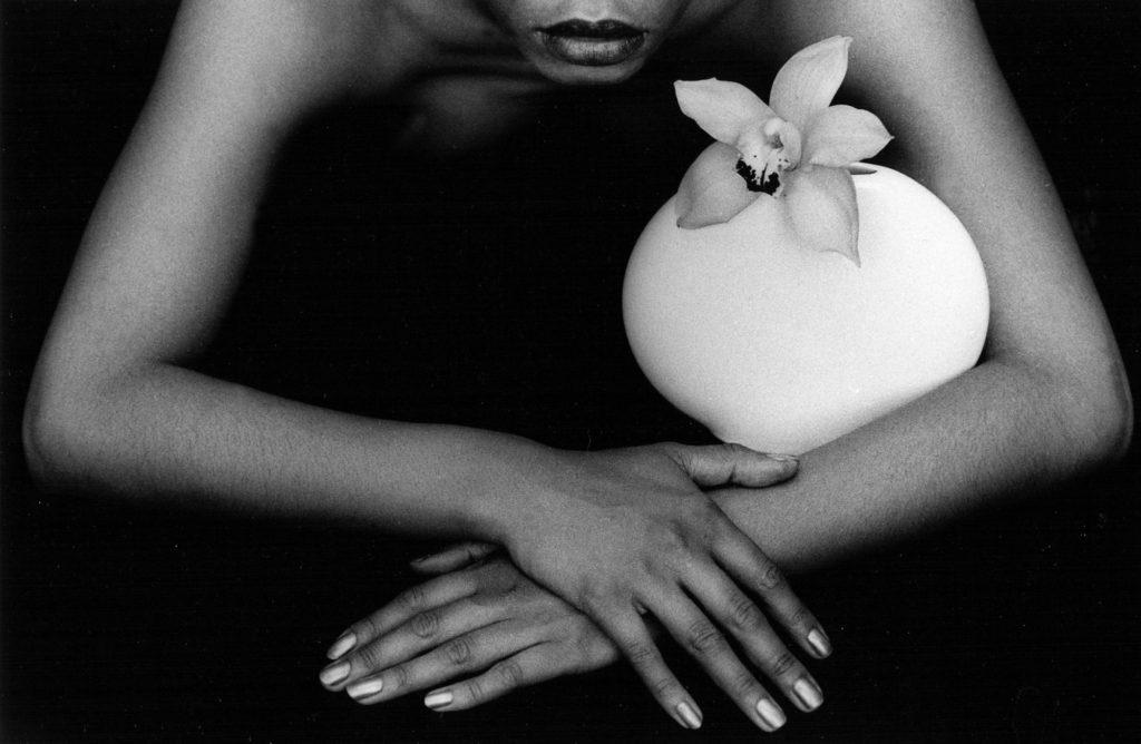 La Belle Orchidee, 1986