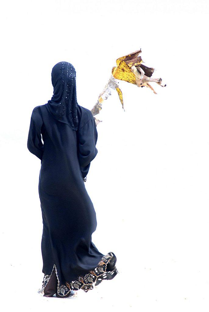 Noir, or et terre, 2007