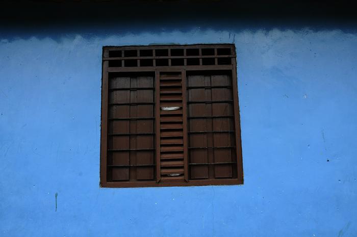 Palenque 10, 2010