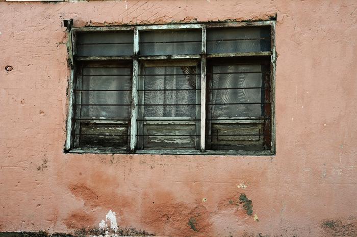 Palenque 16, 2010