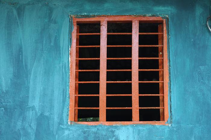 Palenque 17, 2010