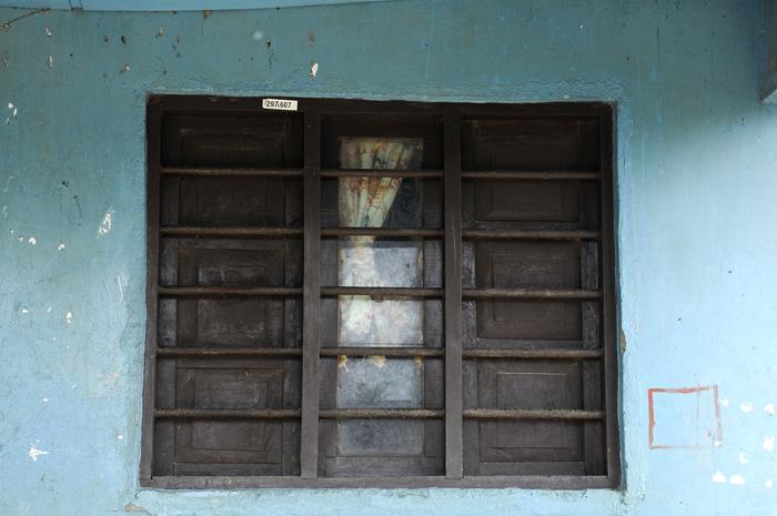 Palenque 4, 2010