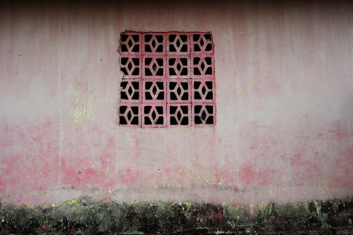 Palenque 6, 2010