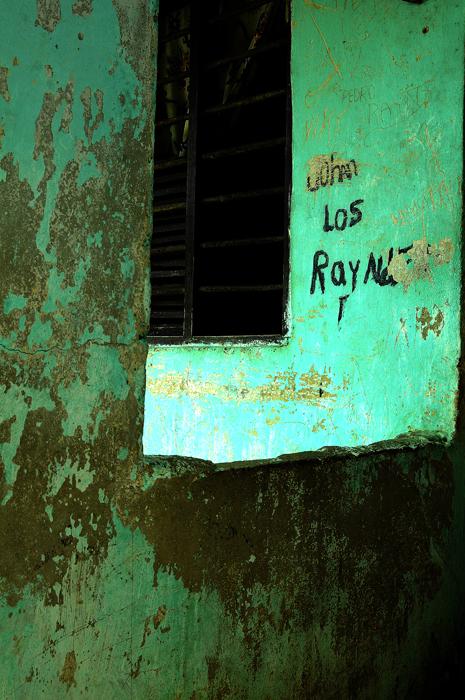Palenque 7, 2010