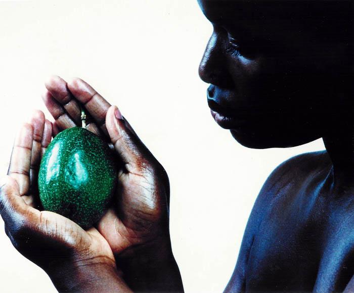 Corps et fruit 28, 1999