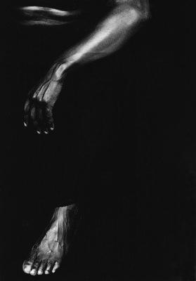 Noirs 64,2001
