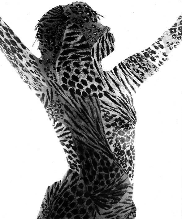 Tigresse, 1993